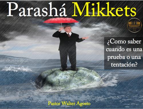 Parasha Miketz