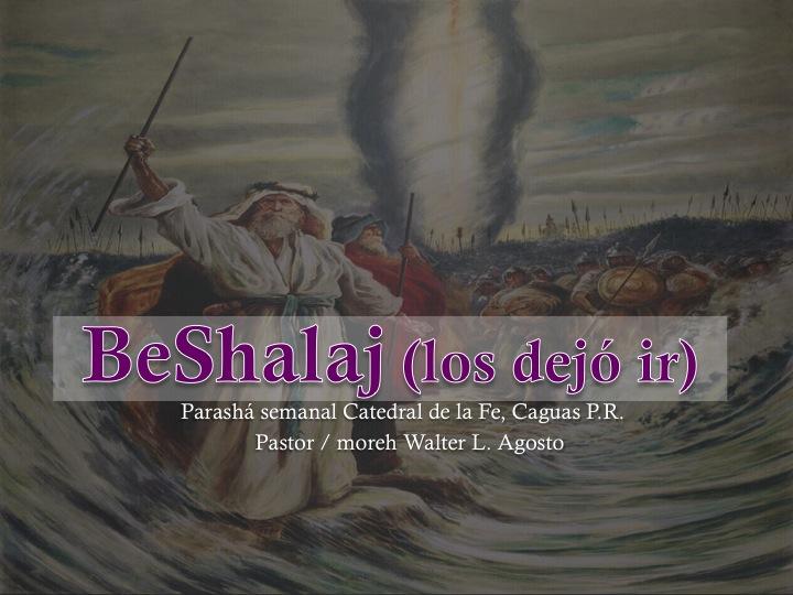 Parashá Beshalach (los dejó ir) Exodo 13:17 al 17:16     Pastor / Moreh Walter Agosto